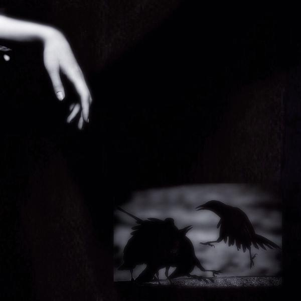 dance. of the Raven's Claw
